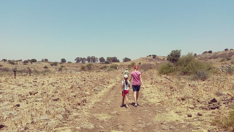 Поездка в израильскую пустыню